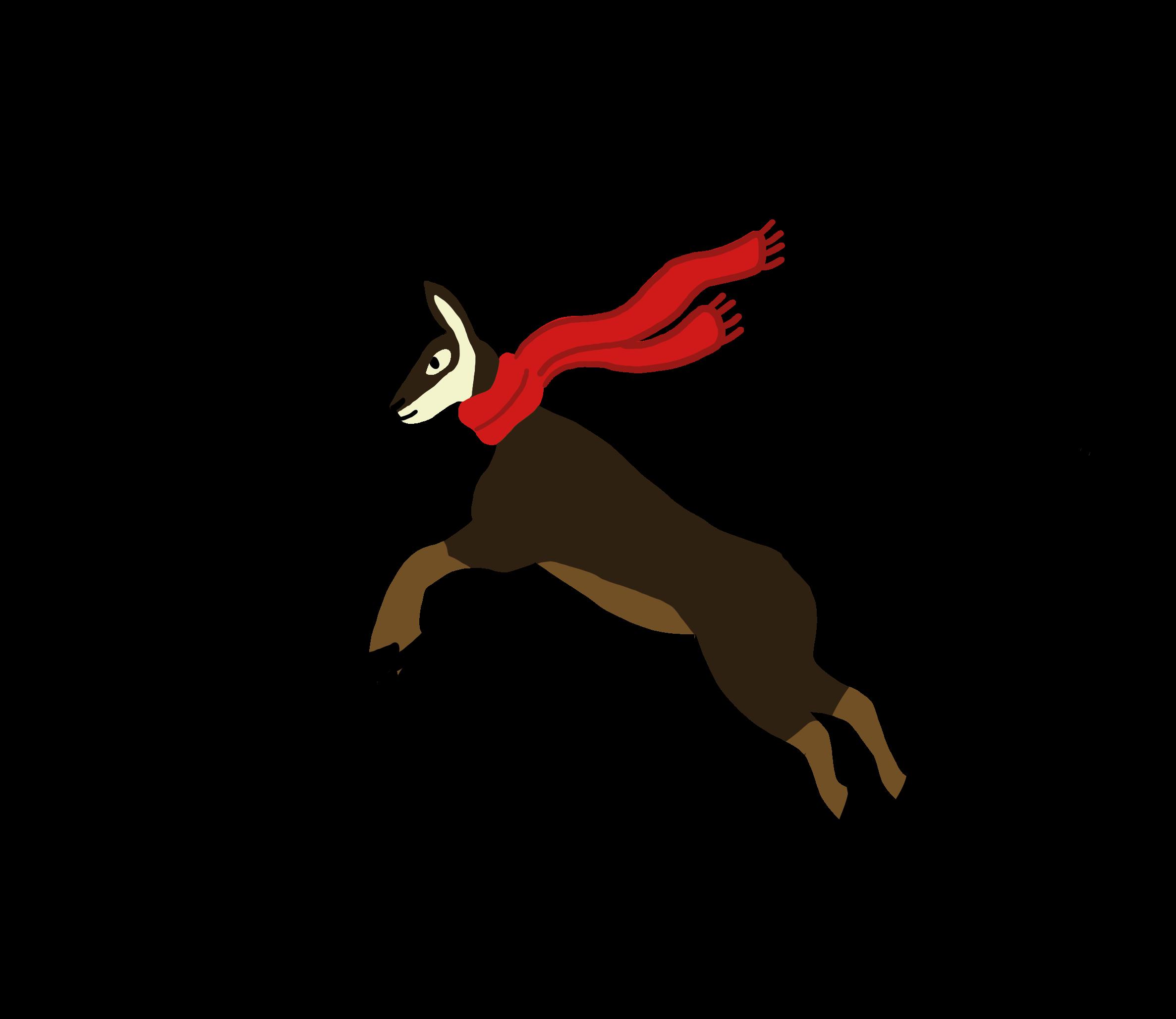 Illustration chamois