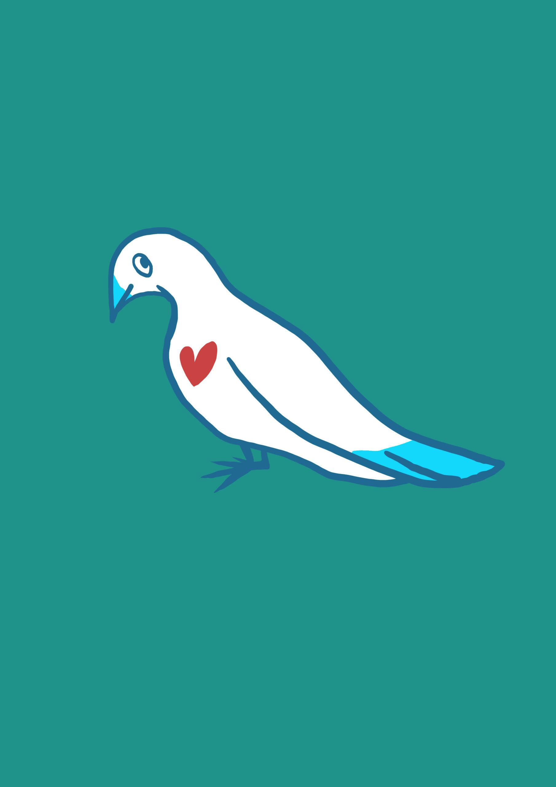 Illustration colombe